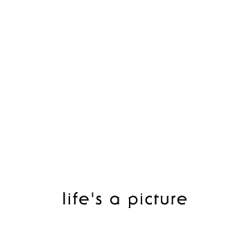 BA BOOTH | Life's a picture